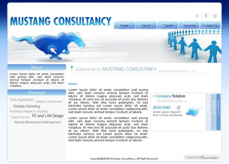 Mustang Consultancy